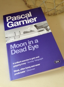 Moon in a Dead Eye by Pascal Garnier (review)