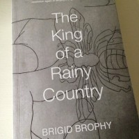 The King of a Rainy Country by Brigid Brophy