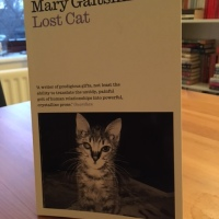 Lost Cat by Mary Gaitskill