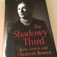 The Shadowy Third by Julia Parry